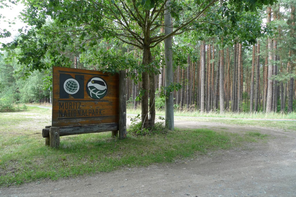 berlin_ruegen_mueritz_nationalpark
